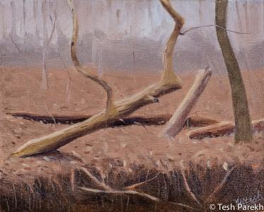 """On the Edge"". 8x10. Plein Air Oil Painting on panel."